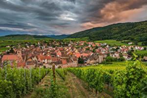 Hintergrundbilder Frankreich Haus Felder Weintraube Hügel Strauch Riquewihr Städte
