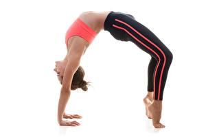 Bilder Gymnastik Joga Posiert Weißer hintergrund sportliches Mädchens