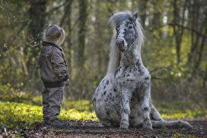 Hintergrundbilder Hauspferd Pony Kleine Mädchen kind Kinder