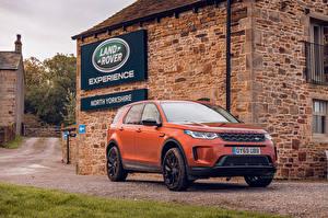 桌面壁纸,,路虎,跨界休旅車,橙色,金屬漆,2019-20 Discovery Sport D180 SE,汽车