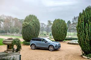 Hintergrundbilder Land Rover Softroader Graue Metallisch 2019 Evoque R-Dynamic First Edition Worldwide auto