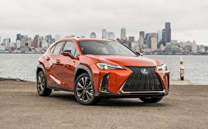 Bilder Lexus Metallisch Softroader Orange UX200 automobil