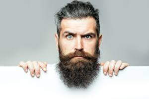 Bilder Mann Finger Kopf Bärtiger Schnurrbart Starren Gesicht