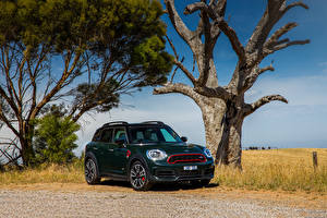 Images Mini Green 2017-20 John Cooper Works Countryman Cars
