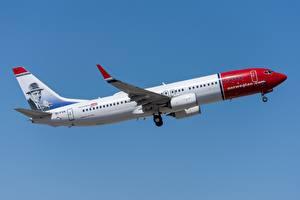 Tapety na pulpit Samolot Samolot pasażerski Boeing Norwegian Air International, 737-800W