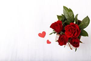 Bilder Rose Sträuße Herz Von oben Blumen