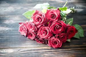 Bilder Rose Sträuße Rot Bretter