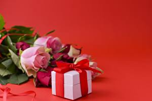Wallpapers Roses Red background Box Ribbon Present