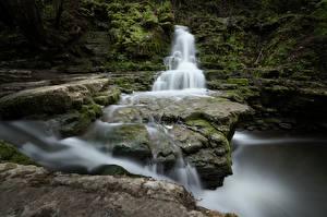 Fotos Steine Flusse Wasserfall Laubmoose Natur