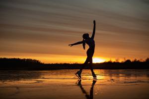Ice Skate Wallpaper 51 Images Pictures Download