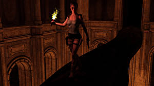 Wallpapers Tomb Raider Tomb Raider Legend Lara Croft Torch vdeo game 3D_Graphics Girls