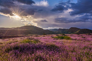 Bilder Vereinigte Staaten Berg Himmel Wolke Sonne Hügel Grand Canyon, Clarkdale Natur