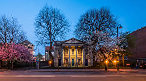 Bilder Vereinigtes Königreich Frühling Tempel Kirche Abend Blühende Bäume Straßenlaterne St George's Church Belfast Städte