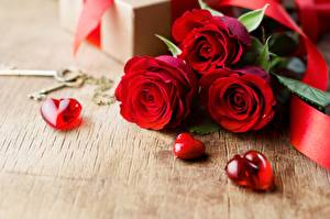 Bilder Valentinstag Rose Herz Vorlage Grußkarte Blüte