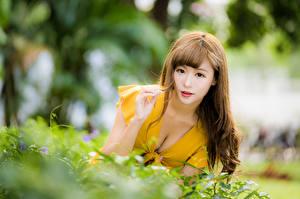 Hintergrundbilder Asiaten Unscharfer Hintergrund Kleid Dekolletee Starren Braune Haare junge frau