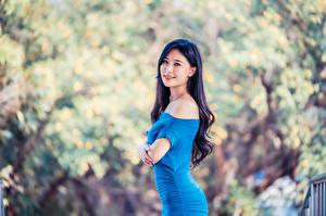 Desktop hintergrundbilder Asiaten Kleid Blick Unscharfer Hintergrund Brünette Mädchens