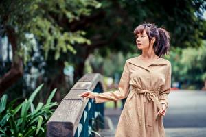 Bilder Asiaten Posiert Umhang Unscharfer Hintergrund junge frau
