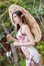 Hintergrundbilder Asiaten Posiert Kleid Regenschirm junge frau
