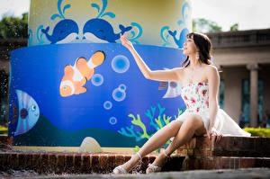 Bilder Asiatische Sitzend Kleid Bein Hand junge Frauen