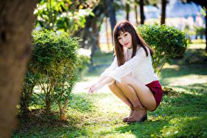 Fotos Asiatische Sitzend Bein Bluse Blick junge frau