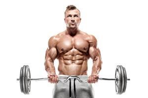 Bilder Bodybuilding Mann Hantelstange Körperliche Aktivität Bauch Hand Muskeln Weißer hintergrund sportliches