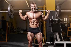 Bilder Bodybuilding Mann Hantelstange Körperliche Aktivität Turnhalle Bauch Muskeln sportliches