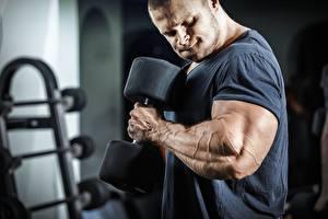 Hintergrundbilder Bodybuilding Mann Hand Muskeln Hantel Trainieren