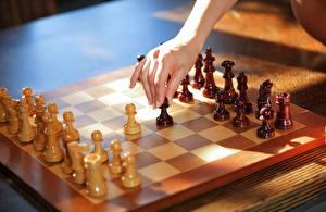 Bilder Schach Hölzern Hand