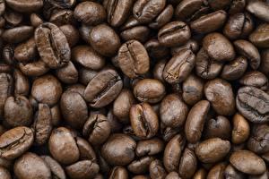 Bilder Hautnah Kaffee Viel Getreide das Essen