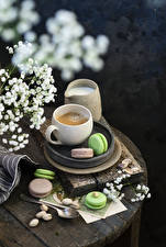 Images Coffee Cappuccino Nuts Cup Macaron Food