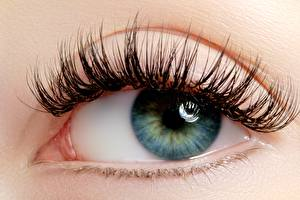 Bilder Augen Wimper Hautnah Starren junge frau