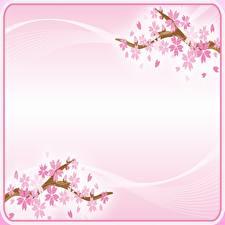 Bilder Blühende Bäume Japanische Kirschblüte Rosa Farbe Vorlage Grußkarte Blumen