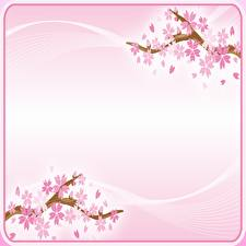 Photo Flowering trees Sakura Pink color Template greeting card Flowers