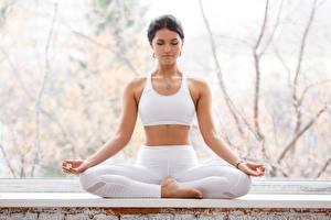 Fotos Gymnastik Lotussitz Joga Posiert Hand Mädchens