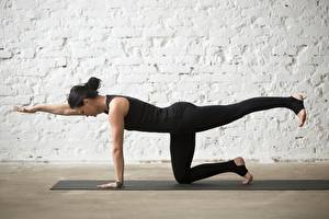 Hintergrundbilder Gymnastik Joga Posiert Körperliche Aktivität sportliches Mädchens