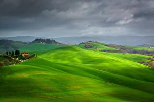 桌面壁纸,,意大利,托斯卡纳大区,天空,草甸,丘,云,Crete Senesi, Asciano,大自然