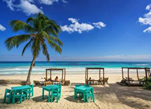 桌面壁纸,,墨西哥,岸,天空,海灘,棕榈科,This Hip Hotel, Tulum, Quintana Roo,