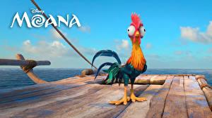 Desktop hintergrundbilder Vaiana – Das Paradies hat einen Hak Disney Hahn Heihei Zeichentrickfilm Tiere