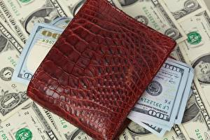 Image Money Dollars Paper money Wallet 100