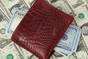 Fotos Geld Dollars Papiergeld Geldbörse 100