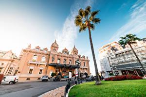 Fotos Monte-Carlo Monaco Gebäude Casino Palmengewächse Städte