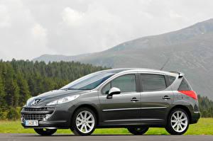 Desktop hintergrundbilder Peugeot Seitlich Graue Metallisch Kombi 207 RC SW auto