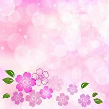 Tapety na pulpit Różowy kolor Szablon karty z pozdrowieniami Kwiaty