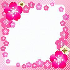 Tapety na pulpit Różowa Szablon karty z pozdrowieniami kwiat