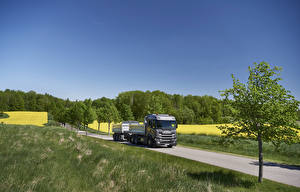 Pictures Scania Lorry Roads Grass  Nature