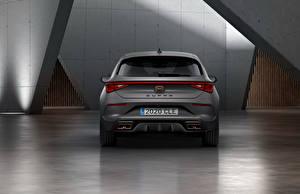 Hintergrundbilder Seat Graue Hinten Cupra, Leon, eHybrid, Worldwide, 2020 auto