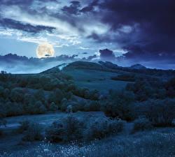桌面壁纸,,天空,晚上,云,月球,丘,灌木,草,大自然