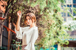 Image Asiatic Branches Leaf Blouse Hands Brown haired young woman