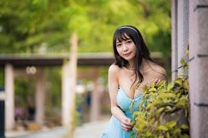 Fotos Asiatisches Brünette Kleid Dekolletee Starren Bokeh junge Frauen