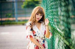 Fotos Asiatische Kleid Unscharfer Hintergrund Blick Zaun junge Frauen